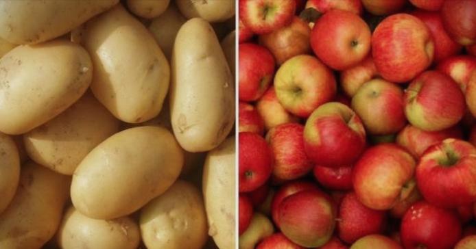 Овие здрави работи ги јадете секој ден, но ако претерате со нив си го уништувате здравјето