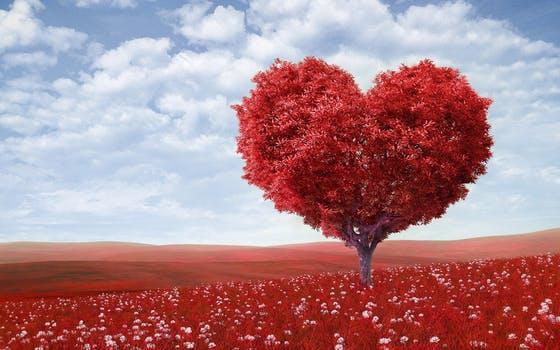 10 работи кои не ги знаете за љубовта