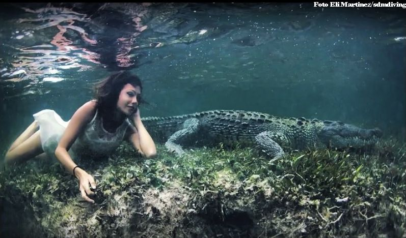 Бестрашна манекенка позира со крокодили, китови, ајкули…