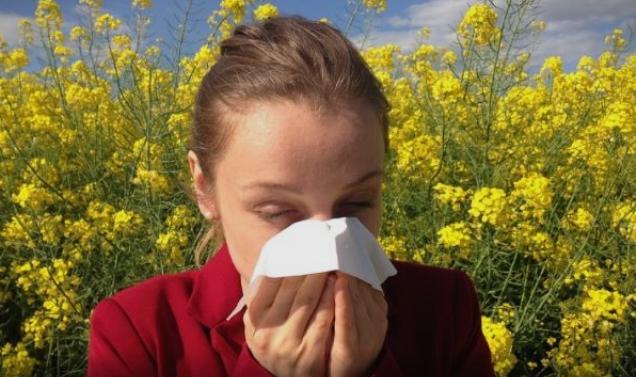 Имате алергија или сте настинати: Како да ја препознаете разликата?