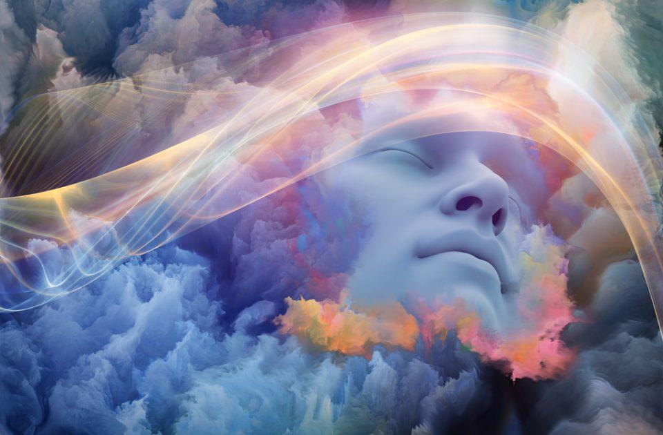 Каква порака носат соновите кога во нив има починато лице?