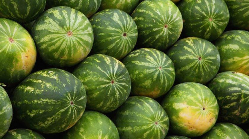 Сите ја ладиме лубеницата во фрижидер, но тоа е голема грешка