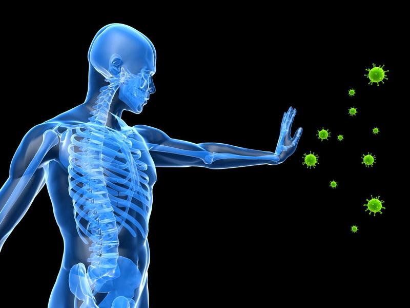 Како до подобар имунитет? Не само за време на пандемијата, туку на долгорочен план