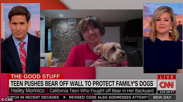 Тинејџерка се соочи со мечка за да си ги спаси кучињата