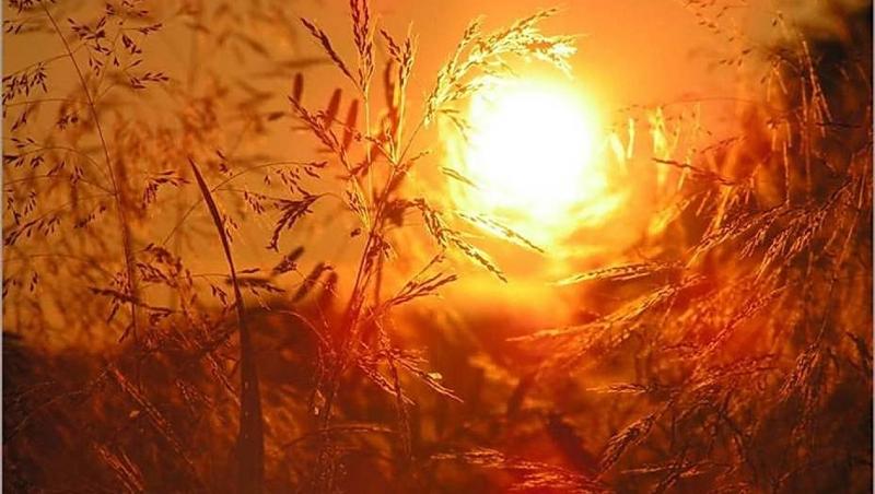 """УХМР со предупредување: Доаѓа нов топол бран, особено на овој датум буквално ќе """"гори"""" тлото во Македонија"""